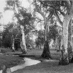Hazelwood_park_first_creek_1950-150x150
